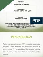 246837855-PPT-PPI-VITA-pptx.pptx