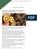 Controverso, Plantio de Dendê No Brasil Triplica Em 4 Anos _ Meio Ambiente _ DW.de _ 14.02