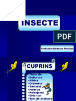 0insecte