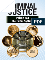 Prison and the Penal System