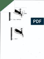Figure redraw (1).pdf