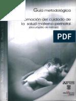 Guia Metodologica Del Cuidado Materno-perinatal