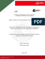 LEON_CARLOS_VILLON_FLAVIA_ESTUDIO (1).pdf