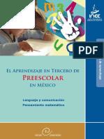 elaprendizajeentercerodepreescolarenmxico-.pdf