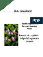 Aula Biodiversidade UEMA