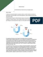 Informe de Osmosis Inversa