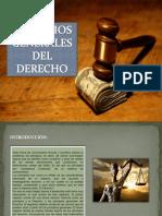 PRINCIPIOS-DEL-DERECHO3.pptx