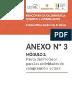 Anexo 3 Pauta Lectura Complementario Modulo 2