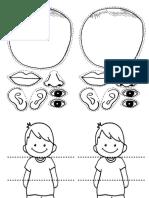 Body Parts Worksheets Pk y k