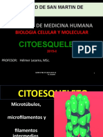 4.Citoesqueleto.pptx
