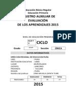 Registro Auxiliar de Evaluacion Primaria 2015