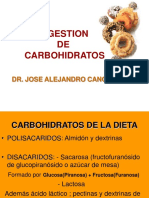 Digestion de Carbohidratos