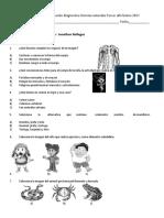 Prueba de Diagnóstico Ciencias Naturales Tercero