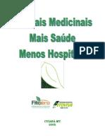 Quintais Medicinais PDF