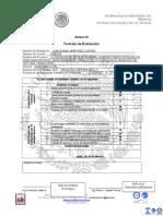 Formato Evaluacion r.p. (Plan Competencias)