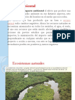Impacto Ambiental Clase 12Microsoft Office PowerPoint