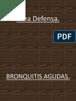 Area Defensa Bronquitis Agudas