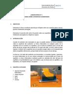Guía_lab_1_Fza_superficies_sumergidas (3)