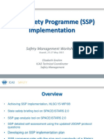 2a E-Gnehm ICAO SSP Implementation