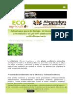 Albahaca Para La Fatiga_ El Insomnio o La Ansiedad y Su Poder Antibacteriano y Antiinflamatorio. _ ECOagricultor