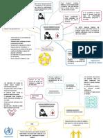 Mapas Conceptuales de Cuidados Paliativos