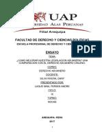 Ensayo - Aduanero