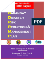 113583345-Barangay-Disaster-Risk-Reduction-Management-Plan (1).pdf