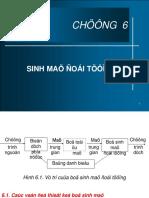 CHUONG 6_TBD VP