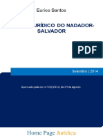 Regime Jurídico Do Nadador-salvador