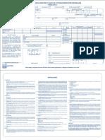 Form10LosAndes.pdf
