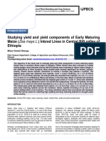 Studying yield and yield components of Early Maturing Maize (Zea mays L.) Inbred Lines in Central Rift valley of Ethiopia