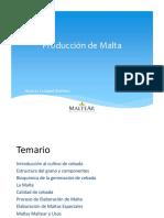 Presentación Maltear NQN 17-05-17 PDF