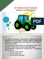 Presentacion Cultivo Ca+¦a de Azucar Junio 2011