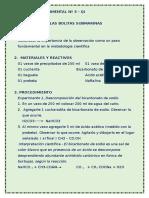 ACTIV_QI03__Bolita_submarina_3-1.doc