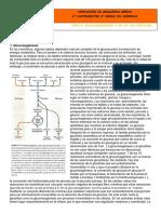Apuntes Tema 5- Gluconeogénesis y Vía Pentosas Fosfato