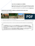 Materialunidad1 Clase Animales