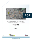 259275583-PUI-Collique-Resumen-Ejecutivo.pdf