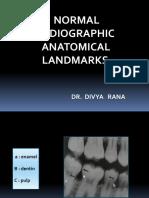 normal anatomical landmarks