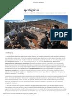 De_hombres_y_superlagartos.pdf