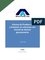 Informe de Pruebas LX en Columnas - Rev01