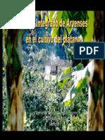 arvences en platano.pdf