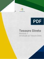 Modulo 1_TesouroDireto (2017)
