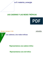 04 Cadenas Redes (1)