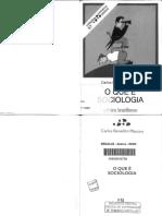 MARTINS, Carlos Benedito 2006 - O que é Sociologia - livro.pdf