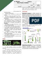 Aula Reino Plantae - Resumo Briófitas.doc