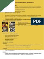 Auditorias en Sistemas y Programas de Riesgos Operacionales