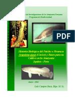 CULTIVO-DEL-PAICHE.pdf