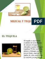 Tequila y Mezcal en México
