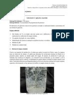 Guía de Laboratorio - Agitación y Mezclado(2)