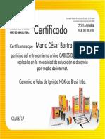 Certificado Cables de Encendido